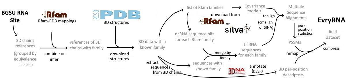 RNANet pipeline schema
